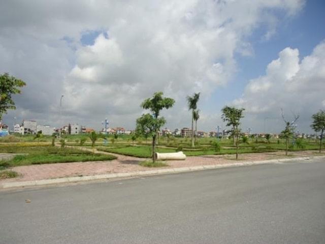 Khu đất đấu giá trống có nhiều cây cỏ và nhà xung quanh